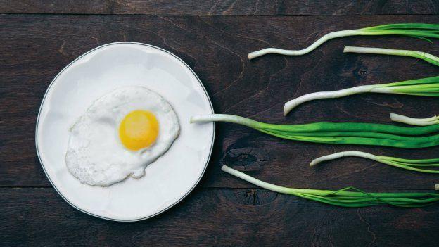 Spermie vs. vajíčka aneb Když darujeme život…