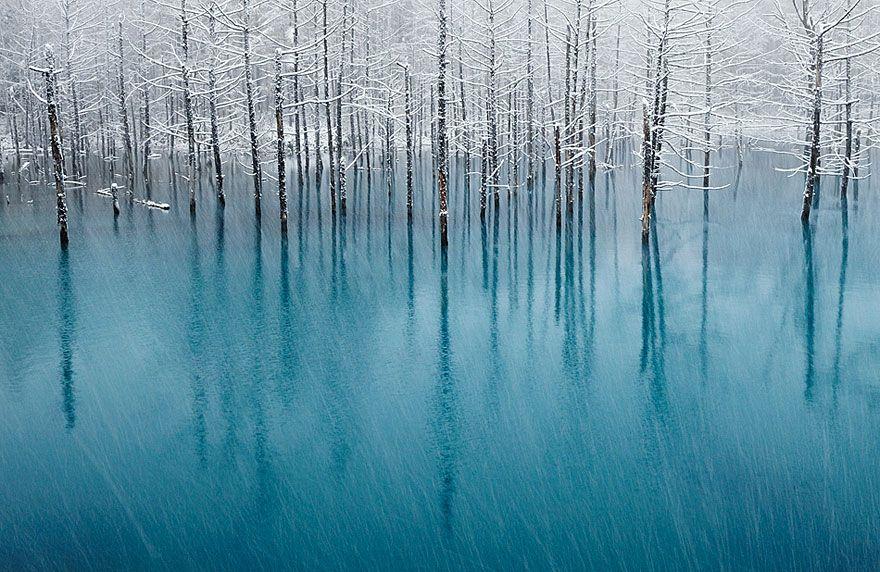 Foto: Kent Shiraishi