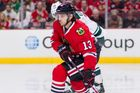 Daniel Carcillo nhl hokej Chicago
