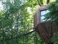 VIDEO: Dům jako šiška. Je ze dřeva a roste přímo na stromě