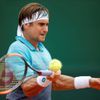 David Ferrer na French Open 2018