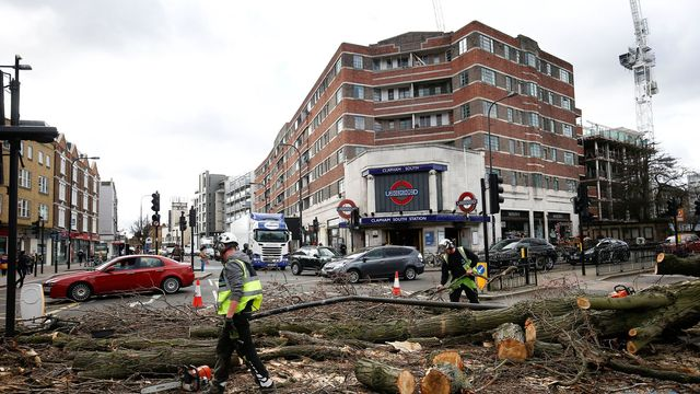 Workers remove a tree lying across a road after it was blown over by high winds, in London, Britain March 10,  2019. REUTERS/Henry Nicholls