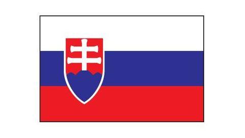 slovensko   vlajka   aktu ln cz