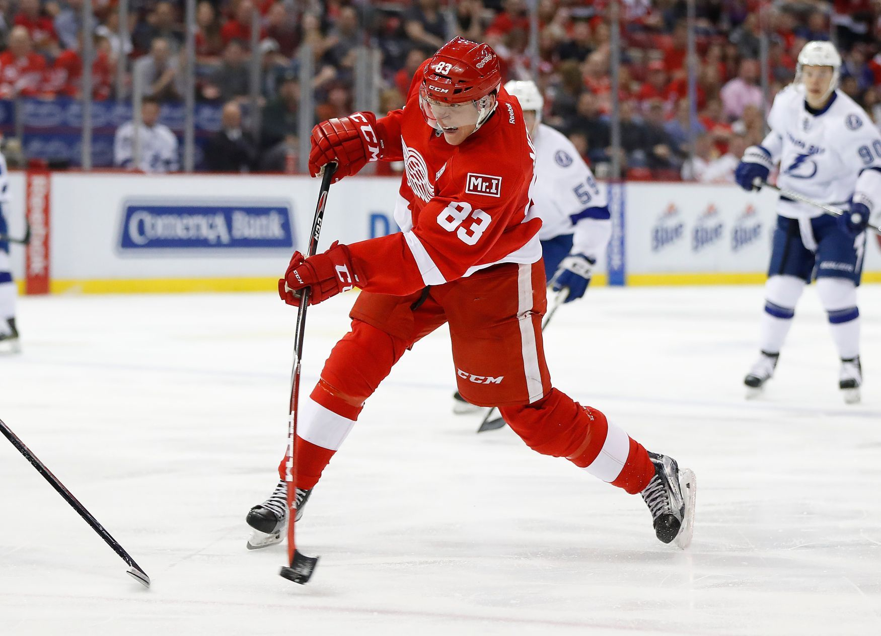 Tomáš Nosek, Deroit Red Wings, NHL 2016/18