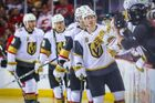 NHL 2017/18, Vegas Golden Knights