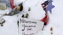 newtown - usa - sandy hook - leden 2013