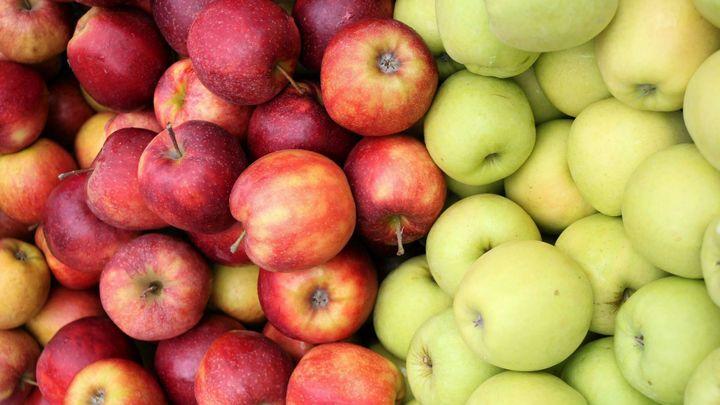 Nahlašovací povinnost pro dovozce potravin se zkrátí o den