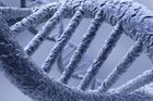 DNA - šroubovice - Thinkstock 2