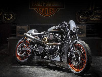 Foto: Chrom, kůže a výfuky jako had. Mistři úprav motocyklů Harley-Davidson bojovali o titul