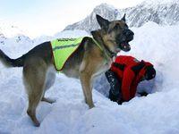 Potvrzeno: Pět lyžařů, které zavalila lavina, byli Češi. Byli až pod třemi metry sněhu