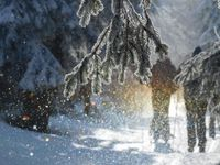 V Česku udeří silné mrazy. Místy teplota klesne i pod minus třicet, varují meteorologové