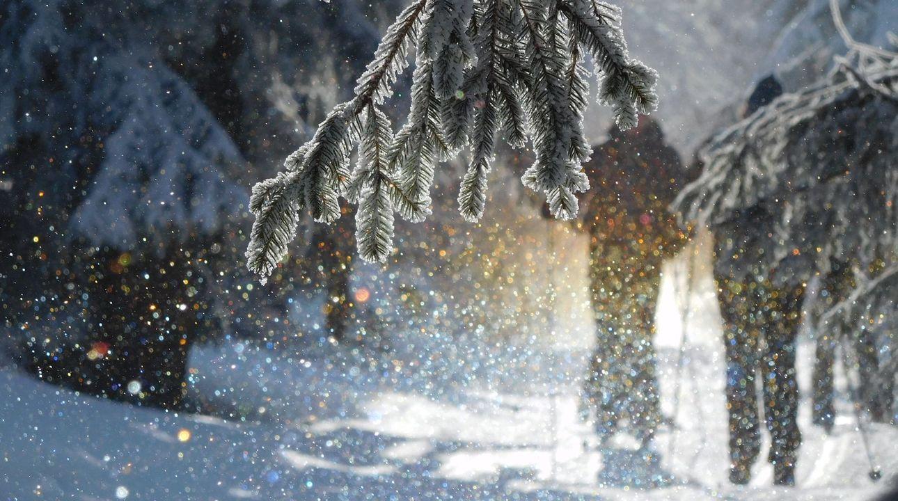 Česká zima se do konce století promění, sníh nahradí déšť a holomráz, říká klimatolog