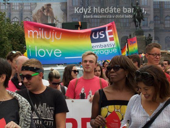 Gay kluci kohouty