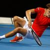 David Goffin na Australian Open 2016