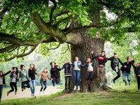 Nejhezčí stromy Česka: Masarykova lípa i zapomenutá vrba