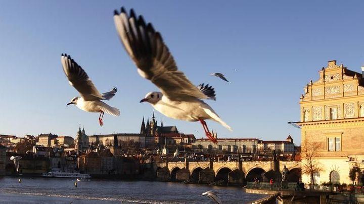 Zahraniční turisté v Česku loni utratili 202 miliard korun