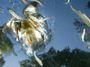 S bagrem na ledňáčka. Ve stínu korony poslanci mění ochranu přírody