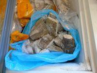 V malešické prodejně našla kontrola 260 kilogramů zkaženého masa