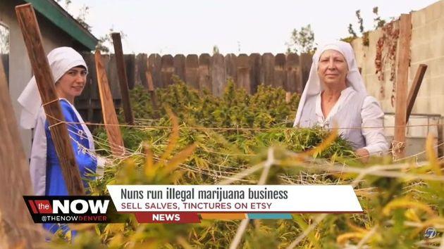 sestry Kate a Darcy vydělávají na prodeji marihuany