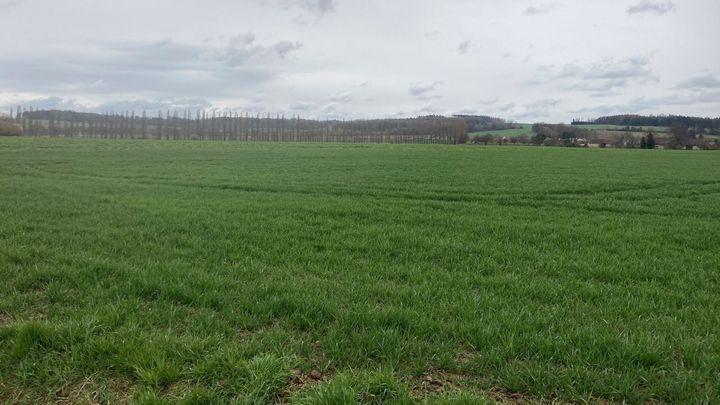 Zemědělcům vadí plán na rychlotrať z Prahy do Drážďan. Stavba nám zničí půdu, varují; Zdroj foto: Agrární komora