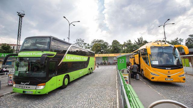 Zelene Autobusy Proti Zlutym Otestovali Jsme Jak Flixbus Po Roce