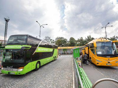 Zelené autobusy proti žlutým. Otestovali jsme, jak FlixBus po roce konkuruje Jančurovi
