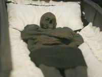 Vědci zkoumají brněnskou mumii barona Trencka. Postavu měl jako Barbar Conan, někdo mu ukradl prst