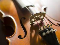 Žena zničila exmanželovi desítky drahých houslí, škoda je přes 20 milionů