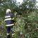 Bouřka zpustošila Šumavu podobně jako orkán Niklas. Vyhněte se výletům na jihu, apeluje národní park