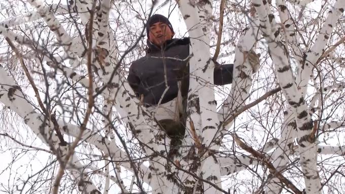 RFE - Ruský student vylezl na strom kvůli internetovému signálu