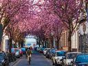 12 nejkrásnějších ulic světa, které byste měli za život vidět