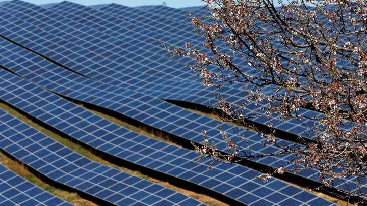 Proti licencím na fotovoltaiku zatím uspěla jediná žaloba