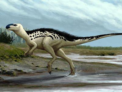 Česko má svého dinosaura. Jmenuje se Burianosaurus a jinde na světě nežil, věří vědci