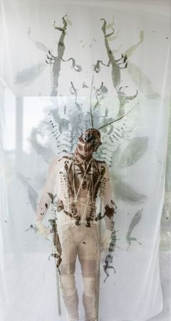 A sample of Robert Gabris' performance in Florence called Insectopia.