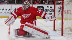Petr Mrázek (Detroit Red Wings)