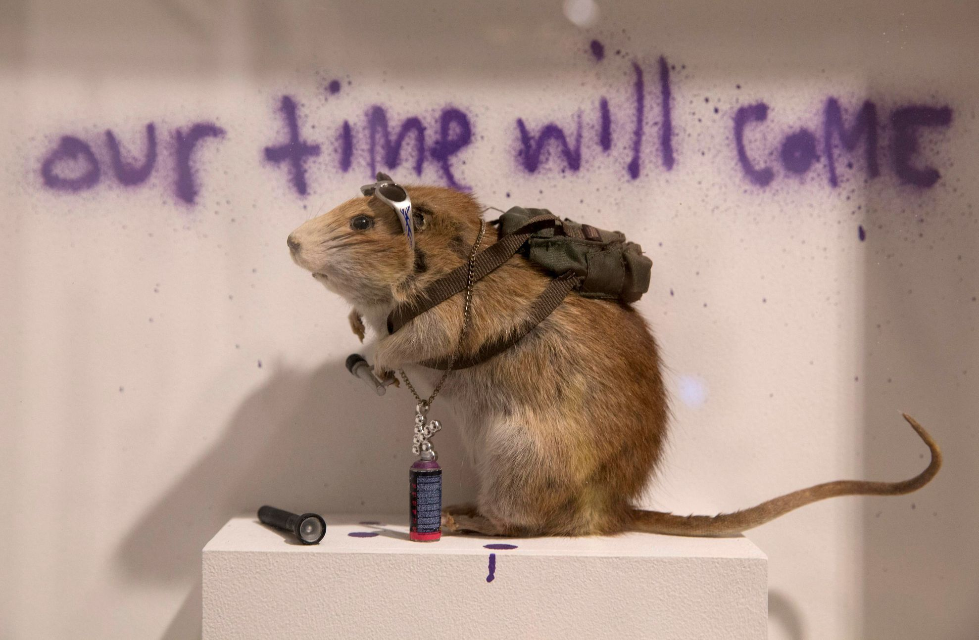 "A rat forms part of work entitled ""Banksus Militus Vandalus"" installation at Banksy: The Unauthorised Retrospective exhibition at Sotheby's S2 Gallery in London"