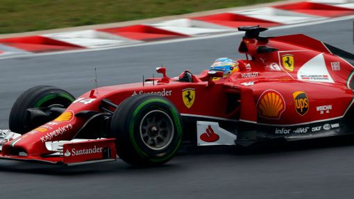 Ferrari Formula One driver Fernando Alonso of Spain drives during the Hungarian F1 Grand Prix at the Hungaroring circuit, near Budapest July 27, 2014. REUTERS/Laszlo Balo