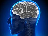 Mozek neumíme efektivně využít, neučíme se to, říká kouč
