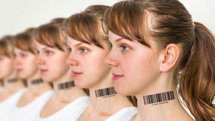 Klonování lidí? To se nestane, budoucnost patří reprodukci tkání, ujišťuje český vědec