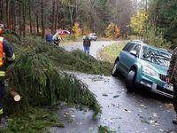 Česko zasáhl extrémní vítr. Mnoho domácností je bez elektřiny