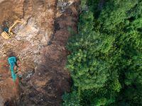 Když tetování zachraňuje Amazonii. Češi vybírají peníze na zalesnění pralesa