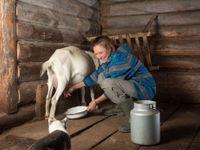 Wellness přestává Čechům stačit, kvůli stresu a únavě odpočívají ve tmě i na farmách