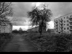 Klomino - the ghost city. At first sight it appears to be a common panel house neighborhood. But this place lost its inhabitants 20 years ago