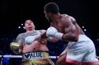 Anthony Joshua vs Andy Ruiz (odveta)