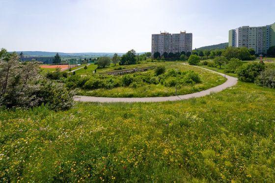 Park Pod Plachtami. Uprostřed panelového sídliště to vypadá jako v přírodní rezervaci.