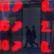 Majetek v podílových fondech stoupl o 50 miliard na 432 miliardy korun