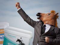 Češi jedí ve velkém přípravky pro koně. Čekají zázraky, lékárníci kroutí hlavou