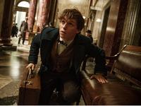 Glosa: Oživení Harryho Pottera zatím nevypadá příliš fantasticky. Důvod? Chybí Harry Potter