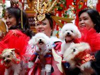 Svět oslavil nový lunární rok. Asijské národy se rozloučily s kohoutem a přivítaly psa