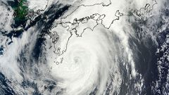 MODIS image from NASA's Terra satellite shows Typhoon Halong in the Pacific Ocean